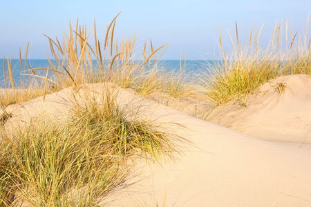 a close up of a sand dune overlooking Lake Michigan