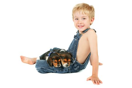 a young boy sits with two beagle puppies sleeping on his lap