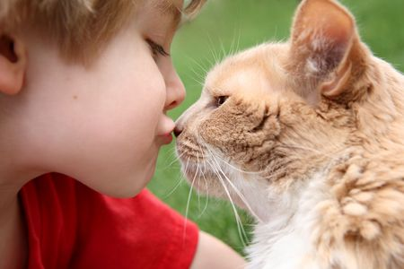a young boy kisses his cat 免版税图像
