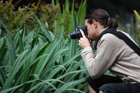 passtime: A photographer taking a shot of plants  Editorial