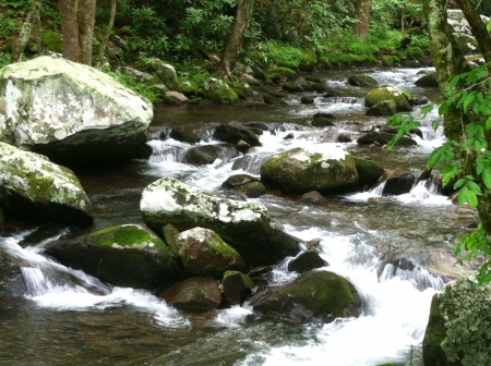 Mountain Stream in the Great Smoky Mountains National Park Banco de Imagens
