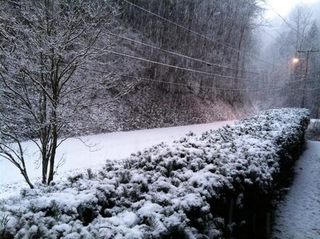 Snowy road in GatlinburgTN Stok Fotoğraf
