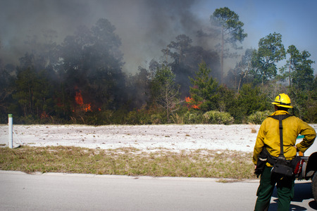 warden: A Florida Forestry Fire Fighter observes a fire in a wild land area of north Florida