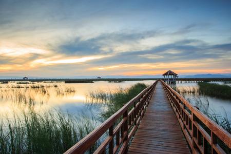 floating bridge: Wooden Bridge in lotus lake on sunset time at Khao Sam Roi Yot National Park, Thailand Stock Photo
