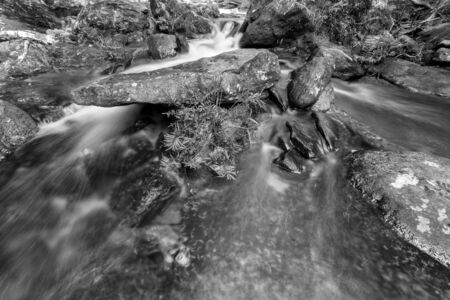 wild silky white: weir on the river black and white Stock Photo