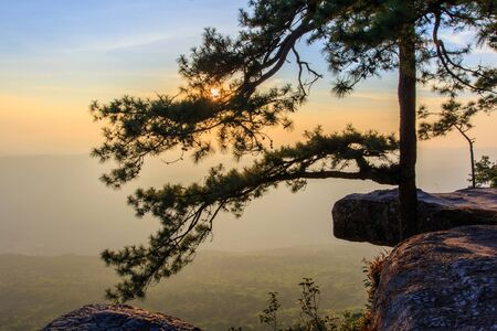 kradueng: Phu Kradueng National Park at Sunrise in Loei Province of thailand