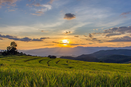 mai: Sunset at Terraced Paddy Field in Mae-Jam Village , Chiang Mai Province , Thailand Stock Photo