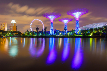 hectares: SINGAPORE-JUNE 26,2015: Night view of The Super Tree Grove at Gardens by the Bay in Singapore. Spanning 101 hectares, and five-minute walk from Bayfront MRT Station. Editorial