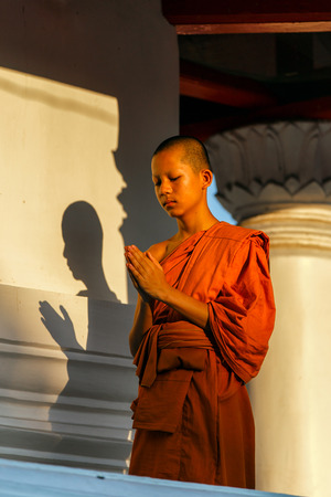 reverent: Young novice standing with hands clasped with a humble spirit. The shadow of the sun, leading to a brick wall at Ayutthaya historical park in Thailand.