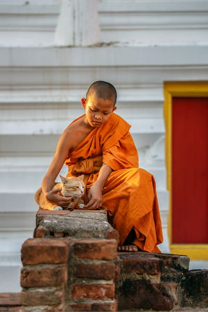 the merciful: Young novice monks playing cat in old temple at Ayutthaya Province, Thailand