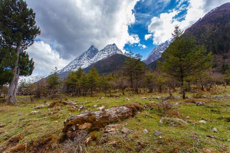 four peaks wilderness: Four Maidens Mountain (Mt. Siguniangshan) Scenic Area is an unspoiled wilderness park located in western china and Qiang Autonomous Prefecture, Sichuan Province, China