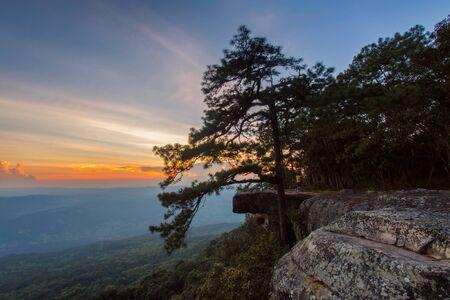 kradueng: Wild twilight time at Phu Kradueng National Park, Thailand
