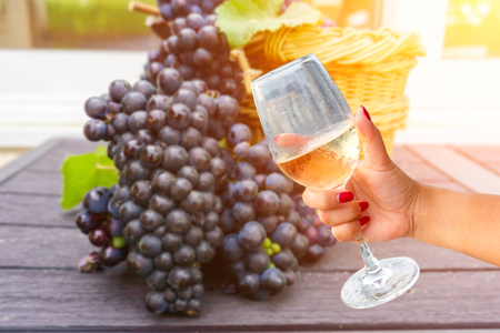 Woman holding a wine glass on vine grapes in champagne on wood background, France