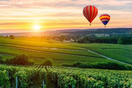 Palloncini colorati di aria calda che volano sopra champagne Vigne al tramonto montagne de Reims, Francia Archivio Fotografico - 81034936