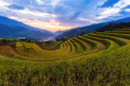 Terassenförmig angelegte Reisfeldlandschaft von Mu Cang Chai, Yenbai, Nordvietnam