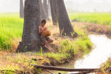 Fishing boy asian farmer people on rice green field during morning time, Ayuthaya, Thailand