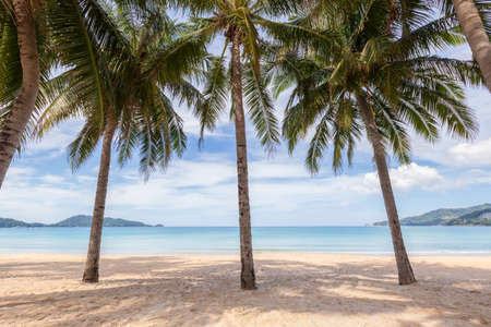 Beautiful nature of the Andaman Sea and white sand beach in the morning at Patong Beach, Phuket Island, Thailand. Nature and travel concept