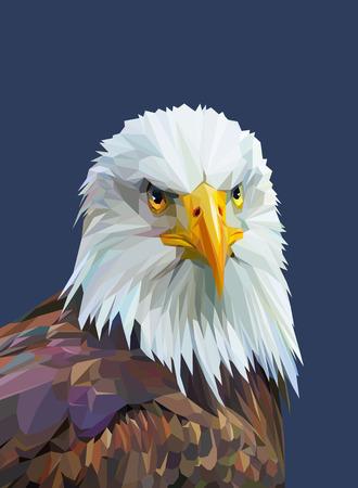 Low-Poly-Plakat mit Adler. Bunte Wildvogel. Dreieck Vektor-Illustration Standard-Bild - 58723552