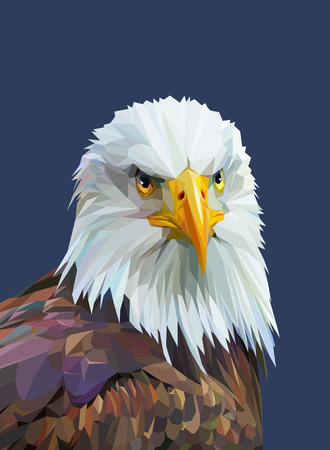 Low poly poster with eagle. Colorful wild bird. Triangle vector illustration