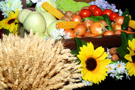 The assortment of vegetable production given at an exhibition of an agriculture Stock Photo