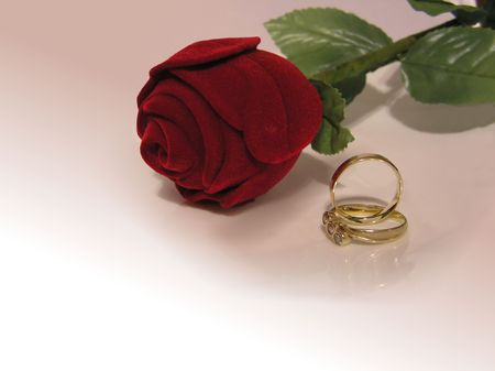 rose and rings on background