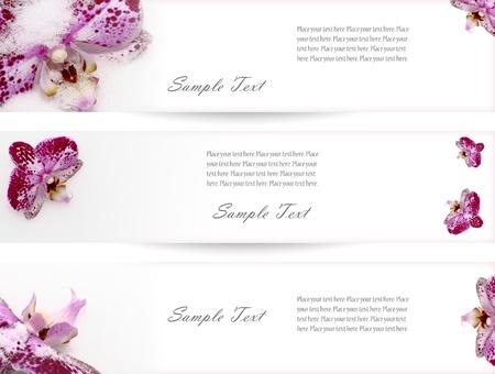 Három bannerek lila orchideák a webes tervezők