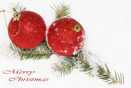 close up of red Christmas balls on spruce branch and white snow Stock Photo - 18175373