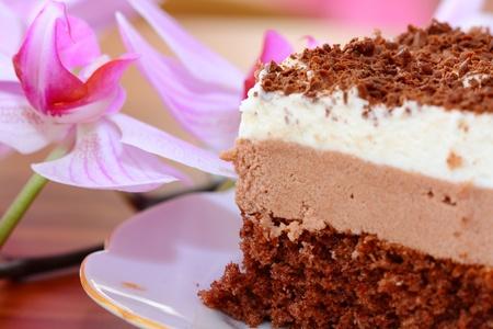 close up of piece of chocolate cake photo