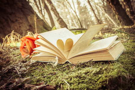 vintage effect, love autumn - open book with heart and rose on the moss in the forest Stock Photo