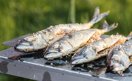 outdoor fireplace: five grilled fish (mackerel) on the outdoor fireplace Stock Photo