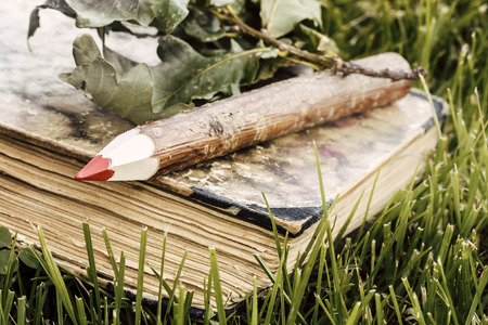 natural wooden pencil and old book with green leaves in the grass - ecological theme    natural wooden pencil with green leaf  photo