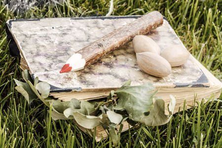 natural wooden pencil and old book with green leaves and nuts in the grass - ecological theme    natural wooden pencil with green leaf  photo