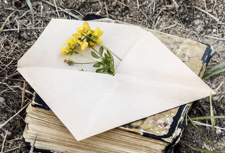 love theme - vintage envelope with flower with old book photo