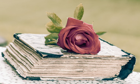 vintage closed book on wood desk with red rose