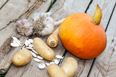 autumn vegetables - pumpkin, pumpkin seeds, potatoes, garlics