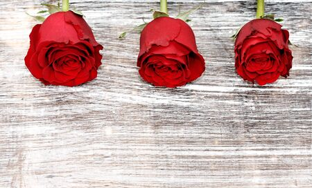 three roses on wooden desk with copy-space