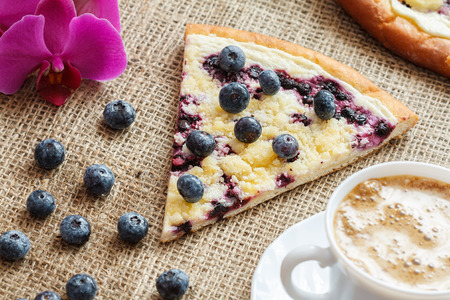 piece of sweet pie with blueberry named Wallachian Frgal. Vlachs typical cakes, baked in Valassko area, Czech Republic - still life image Stock Photo