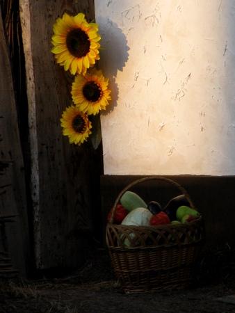 ukrainian: Ukrainian village Stock Photo