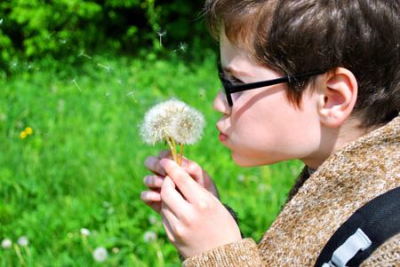 The boy blows off dandelion petals.