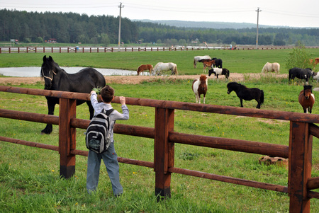 niños saliendo de la escuela: El joven agricultor se ocupa de la agricultura.