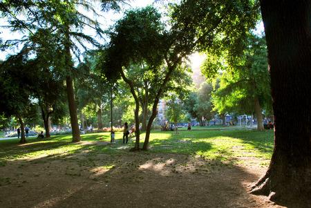 Fine Romance park at hot noon.