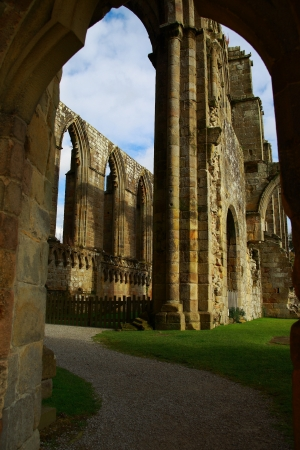 abbey: Medieval ruin of Bolton Abbey