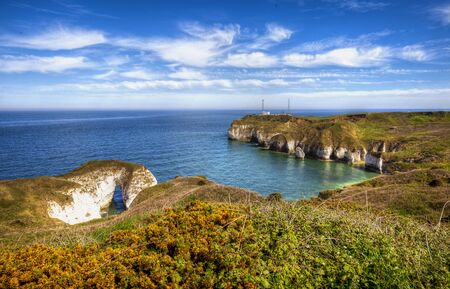 Flamborough coast of the North Sea, Yorkshire, Great Britain.