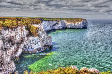 Flamborough coast  of the North Sea, Great Britain.