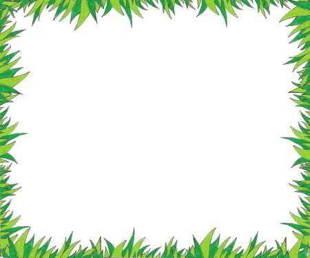 herbe: herbe