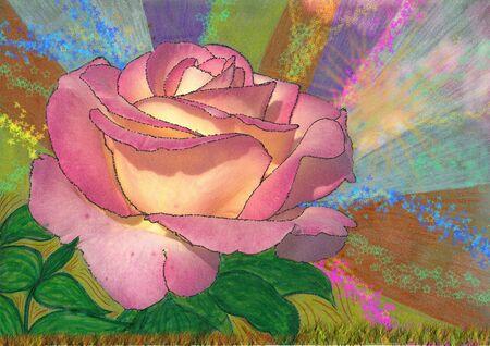 illustrazione d une rose