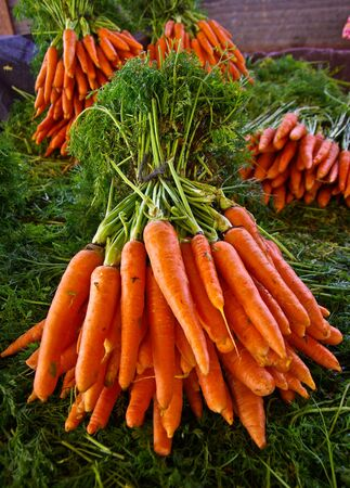 vegetable cook: A  bunch of carrots at the market