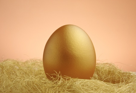 valuable: a single golden egg in the nest