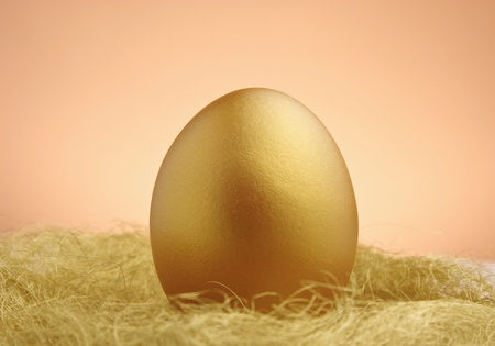 a single golden egg in the nest photo