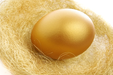 a single golden egg in the nest isolated on a white background photo